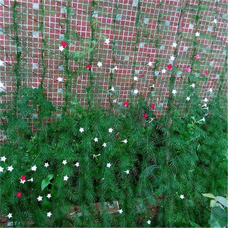 Nylon Trellis Netting Garden Climbing Bean Plant Nets Grow Fence Green Support Z
